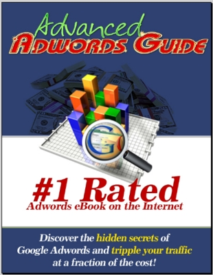 Product picture Advanced Google Adwords Guide